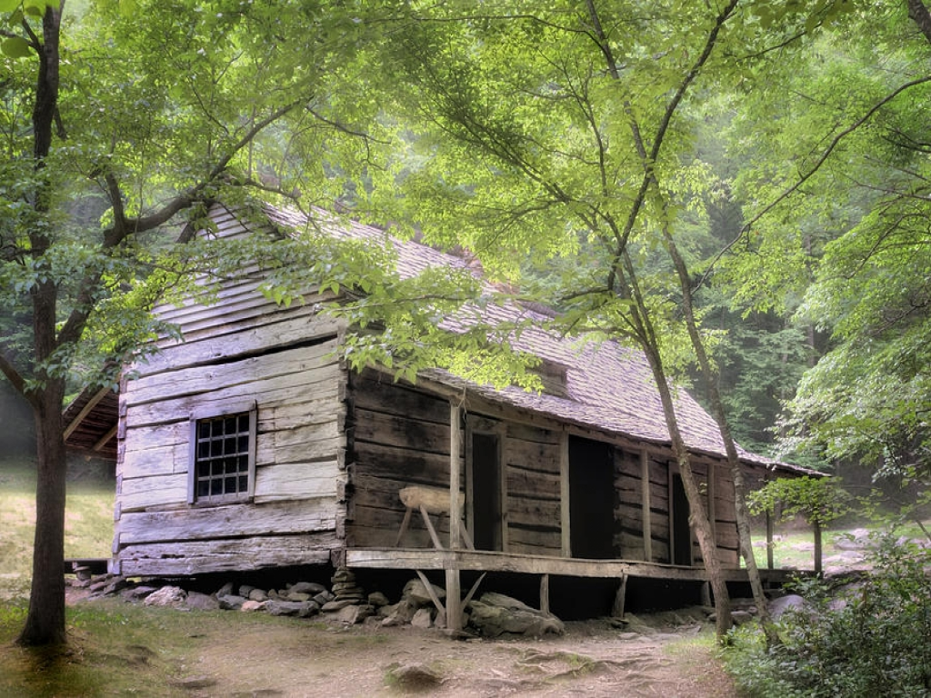 Rustic Cabin Smoky Mountains Secluded Smoky Mountain Cabin