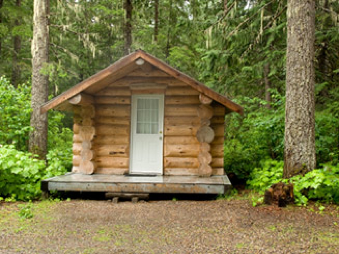 how to build a log home with your own trees