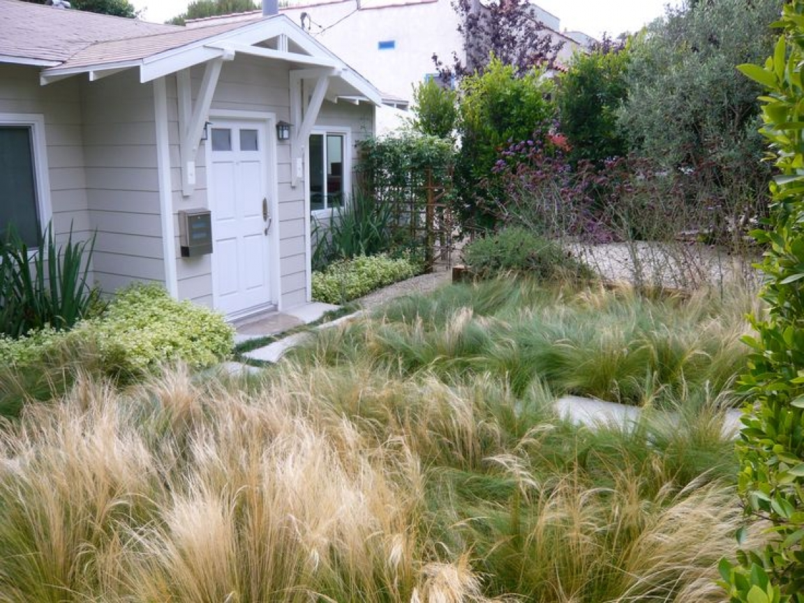 No Mow Front Yard Landscaping No Lawn Front Yard ... on No Mow Backyard Ideas id=49470