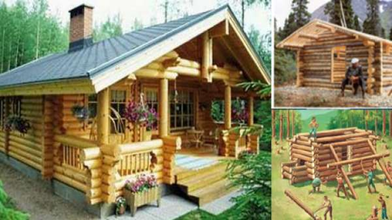 how to build a log cabin from your own trees