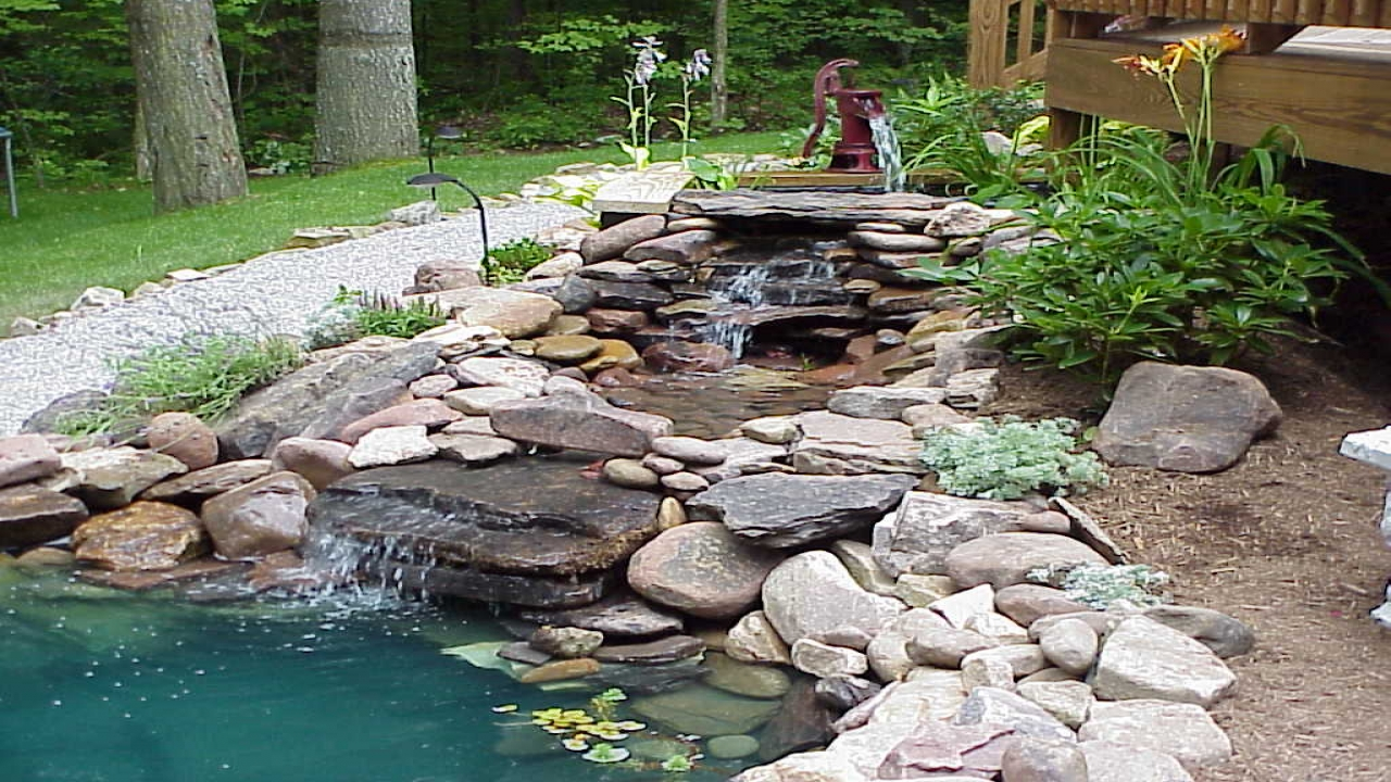 Natural looking garden ponds and waterfalls garden ponds for Garden pond waterfall ideas