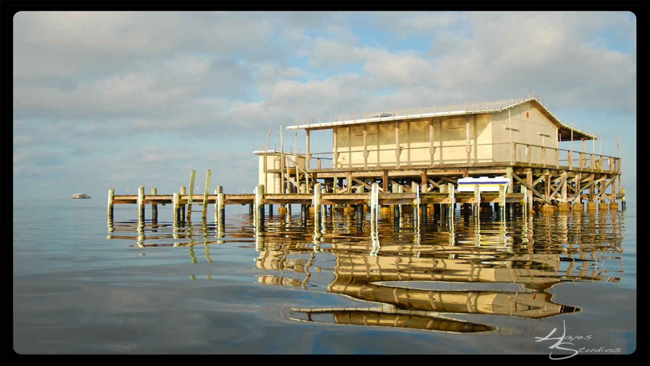 Stilt Homes On The Gulf Of Mexico Pictures River House On
