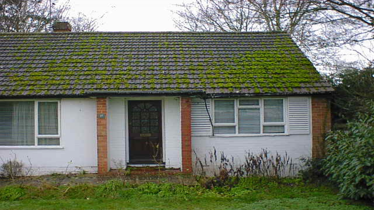Bungalow painting ideas bungalow extension ideas bungalow for Flat roof bungalow designs
