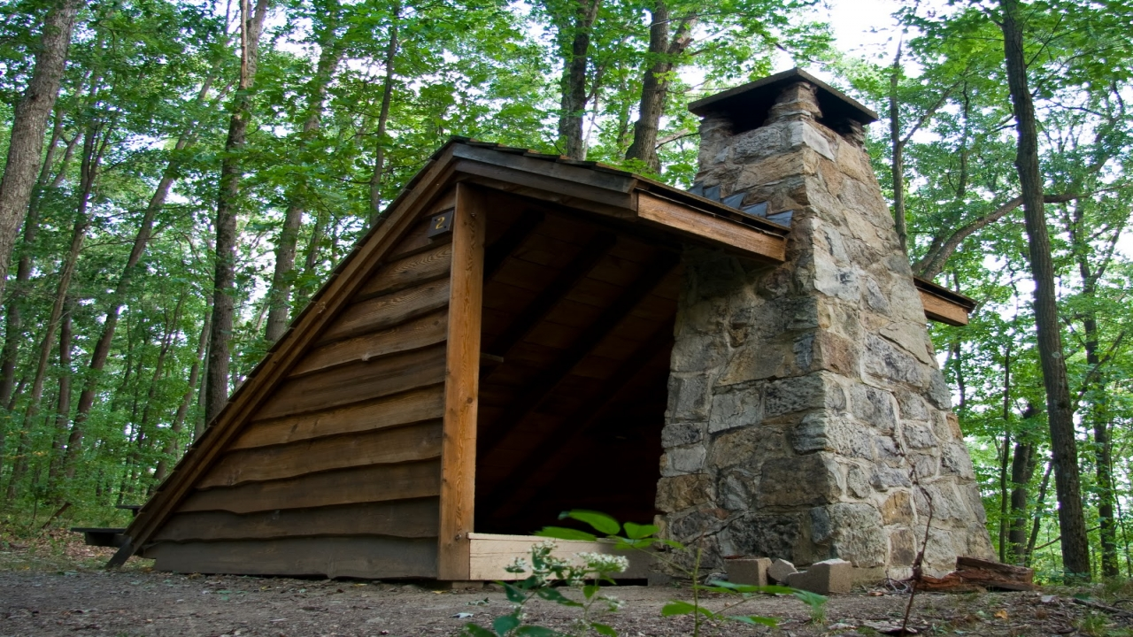 Adirondack Shelters Fireplaces Lean Cabin Wilderness Kits Treesranch