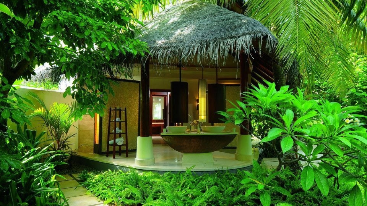 Sri Lanka National Tree Sri Lanka Beautiful Tree Houses ...