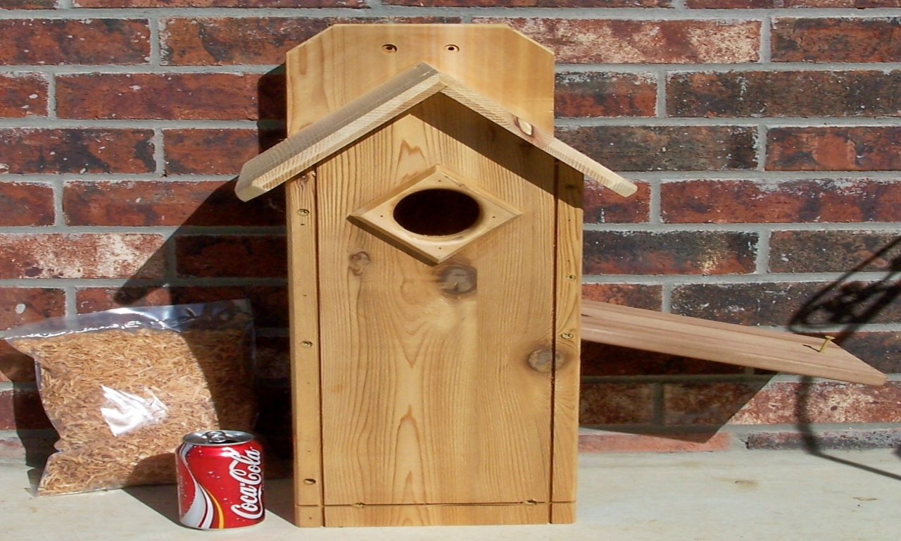 Northern flicker woodpecker house northern flicker for Northern house plans