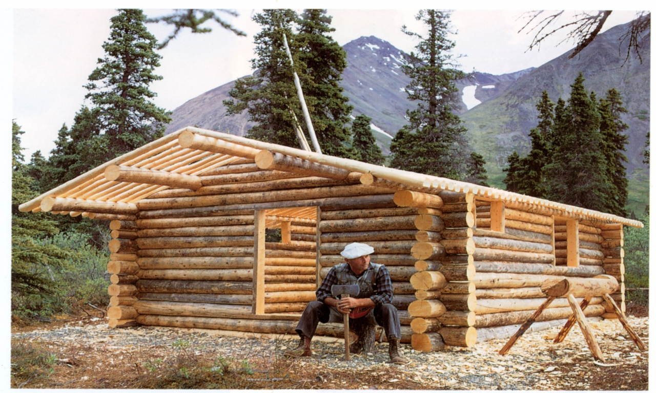 Small log cabin building mini cabin kits small homes to for Build it yourself house