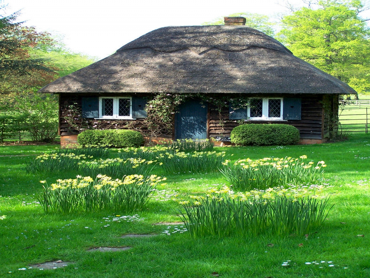 Small cottage house small cottage house plans southern for Small cottage living